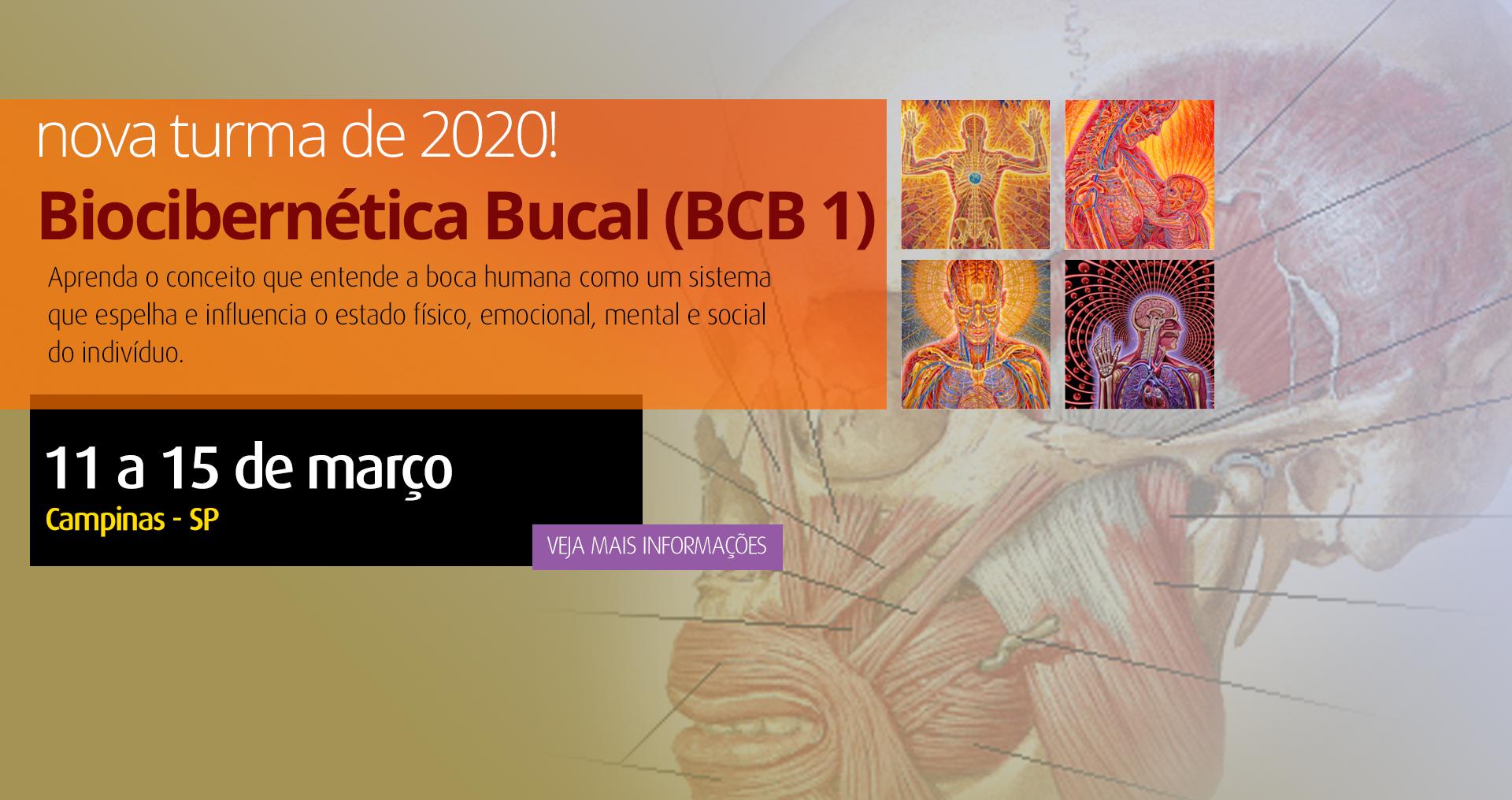 BCB 1 2020
